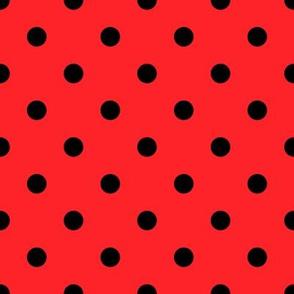 Ladybug polkadot