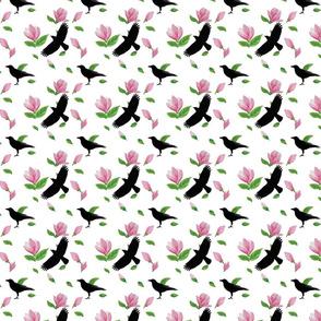Tulip magnolia & Crows