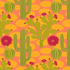 Spectacular Cacti