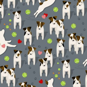 Parson / Jack Russell Terriers dogs with heart / Slate