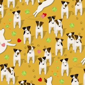 Parson / Jack Russell Terriers dogs with heart / Goldenrod