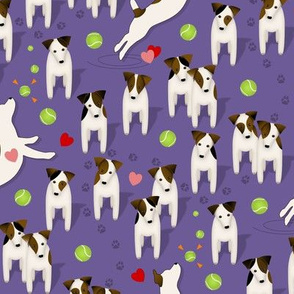 Parson / Jack Russell Terriers dogs with heart / Purple