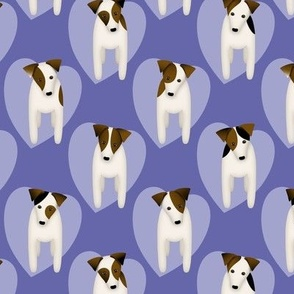 Parson Jack Russell Terriers with cute doggy head tilt / Goldenrod yellow