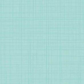 19-02Y Aqua Blue Linen Solid