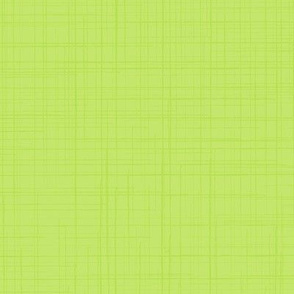 19-02V Lime Green Linen Solid
