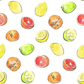 Citrus fruit - lime, lemon, mandarin and grapefruit