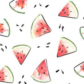 Watermelon parts - fresh summer fruit
