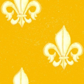 19-02A Mustard Yellow Ochre Home Decor Large France