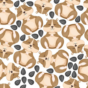 hamster pattern