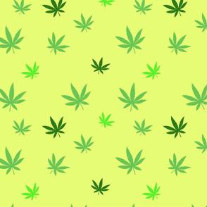 pattern of cannabis or marijuana leaves