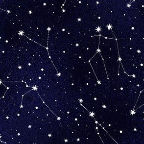 Zodiacal constellation