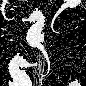 Seahorses Black and White