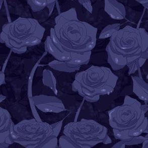 Midnight Rose Garden