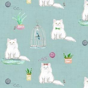 hey cat! persian sapphire