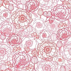 Poppies Line Art