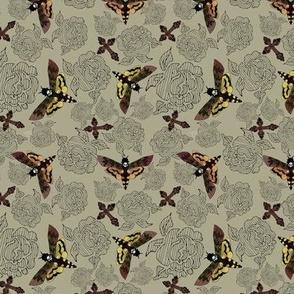 Sancti-Moths (small-scale)
