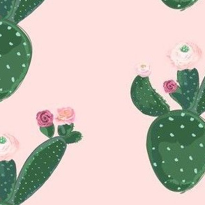 Flowers on Cactus on Pink