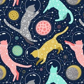 medium scale / cats in space