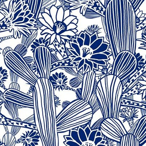 Modern Desert Flowering Cacti  - LARGE