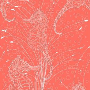 LA Seahorses Coral and White line