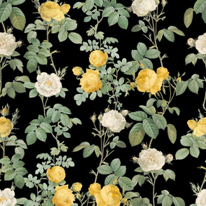Les Roses de Redoute ~ Yellow and Cream on Black