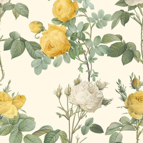 Les Roses de Redoute ~ Double Stripe ~ Yellow and Cream on Cosmic Latte