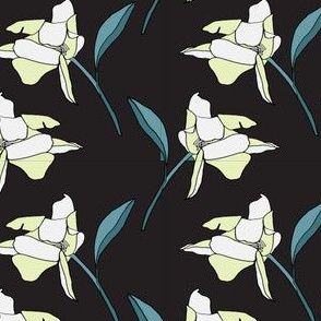 Blossom of a Rose in Creams and Black