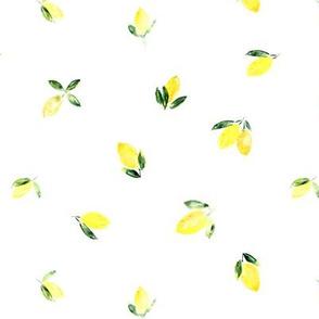Baby lemons • watercolor