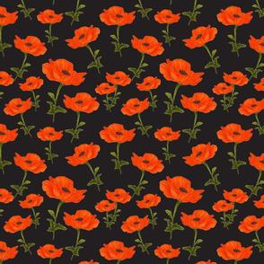 Poppy garden-black
