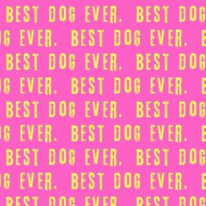 """(3/4"""" scale) best dog ever.  - yellow on pink LAD19BS"""