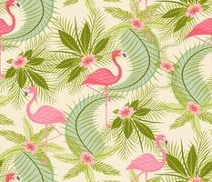 Flamingo Paradiso