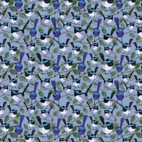 Watercolour blue wrens