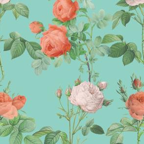 Les Roses de Redoute ~ Double Stripe ~ Coral on Chateau