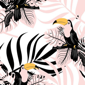 Toucans in Pink and Black Paradise