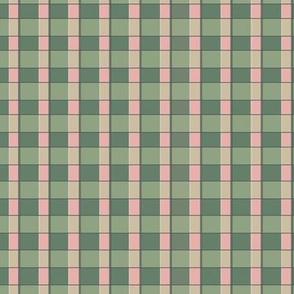 Sage & Pink Checkerboard