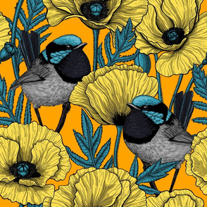 Fairy wren and poppies in yellow