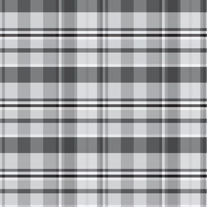 19-03Y Light Gray Black Plaid