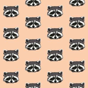 Randall the raccoon in peach - small
