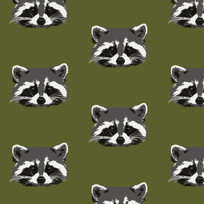 Randall the raccoon in green