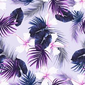 hibiscus purple bloom 2