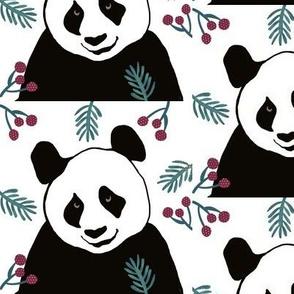 Panda Pa