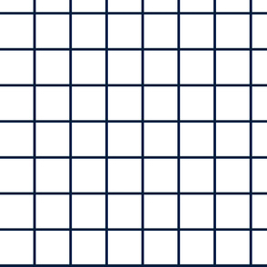1 inch white with navy grid