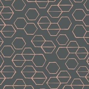 Phoenix Plant Lady Hexagon Geometric in Coral + Charcoal // Desert Modernism // Mid-Century Modern // Desert Chic