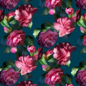 Moody Camellias