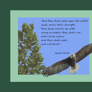 Eagles' Wings by Shari Lynn's Stitches