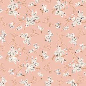 Clematis floral- pink