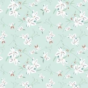 Clematis floral - Mint