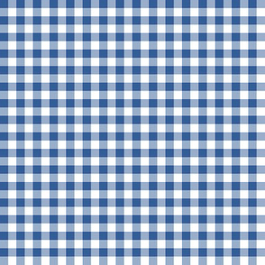 1930s true blue and white gingham