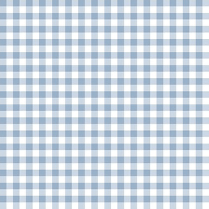 1930s baby blue and white gingham