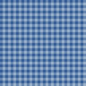 1930s blue on blue gingham
